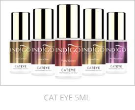 2+2 Cat Eye